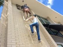 Art climbs walls