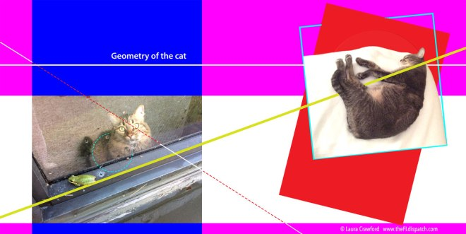 Geometry-of-the-cat-C